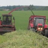 Agro Rozstání - sběr čerstvé píce na senáž