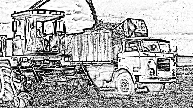 Agro druzstvo Rozstani - historie