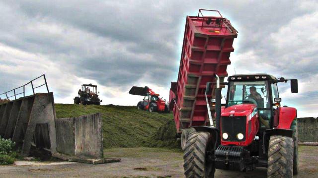 Agro druzstvo Rozstani - vyrobni proces silazovani